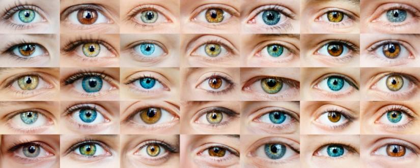 Человеческий глаз - как работает зрение?